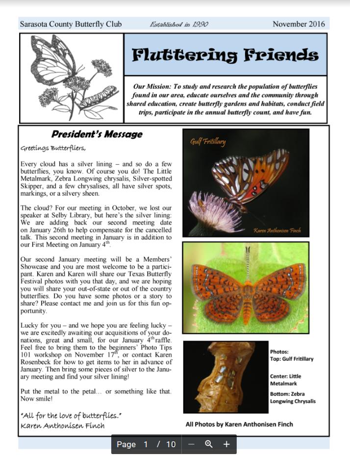 sara-butterfly-soc-crop